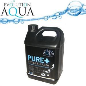 Pure Filter Start Gel 2,5l na 25-150m3