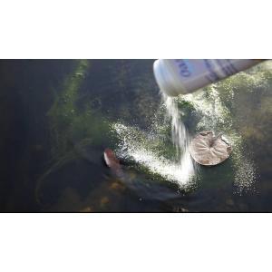 Oase AquaActiv AlGo Direct 500 ml na 10 m3 - proti vláknité řase